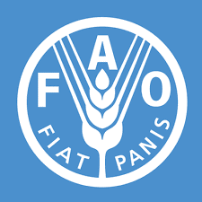 Food and Agriculture Organisation - FAO